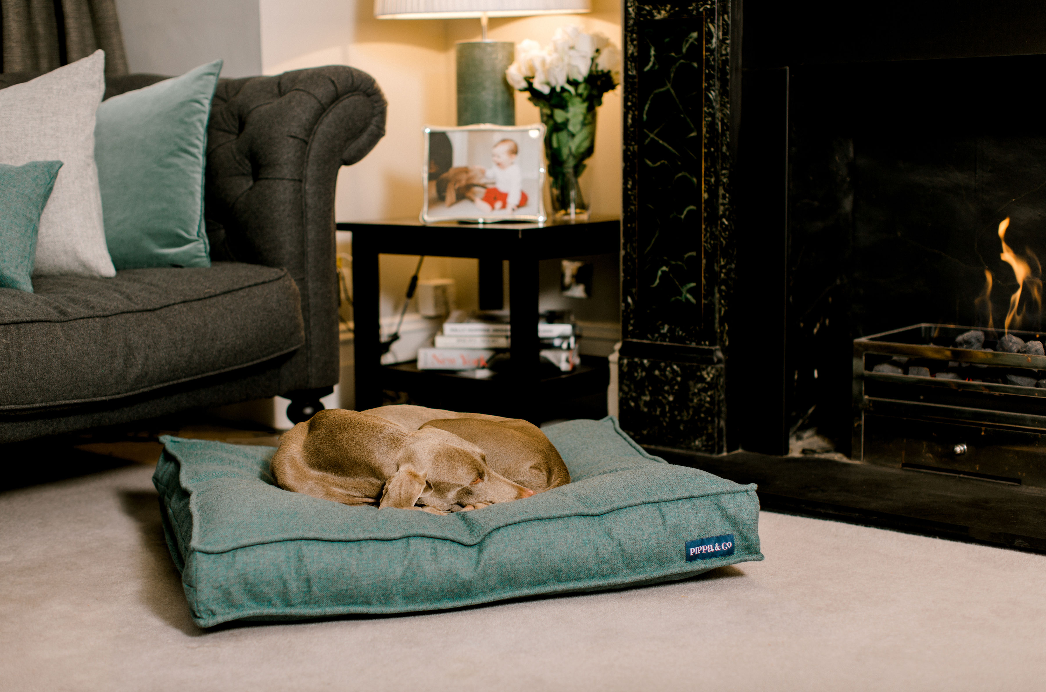 Picture of: Pippa Company Luxury Dog Beds
