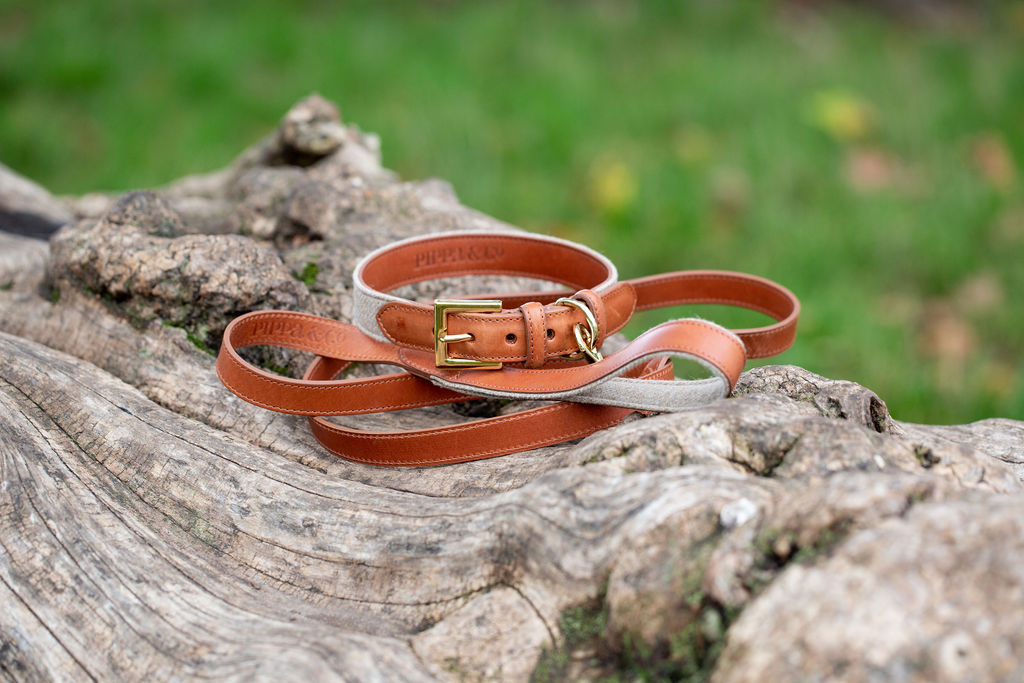 oatmeal-collar-lead-2